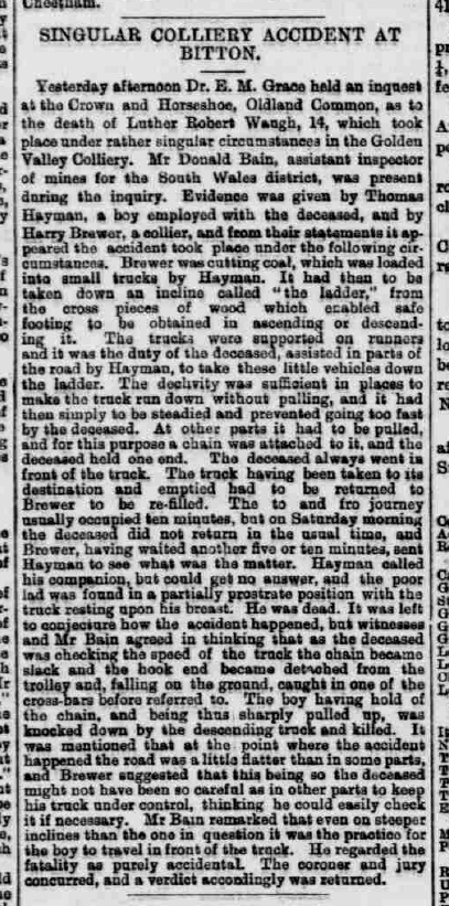 Luther Robert Waugh - Western Daily Press - Thursday 17 December 1885